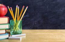 Der Weg vom Baum zum Bleistift