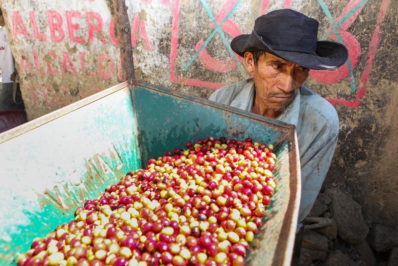 Fair gehandelter Kaffee aus Perú, elegante Smartphones aus China: unsere Welt ist ohne Teamarbeit nicht mehr vorstellbar.(#01)