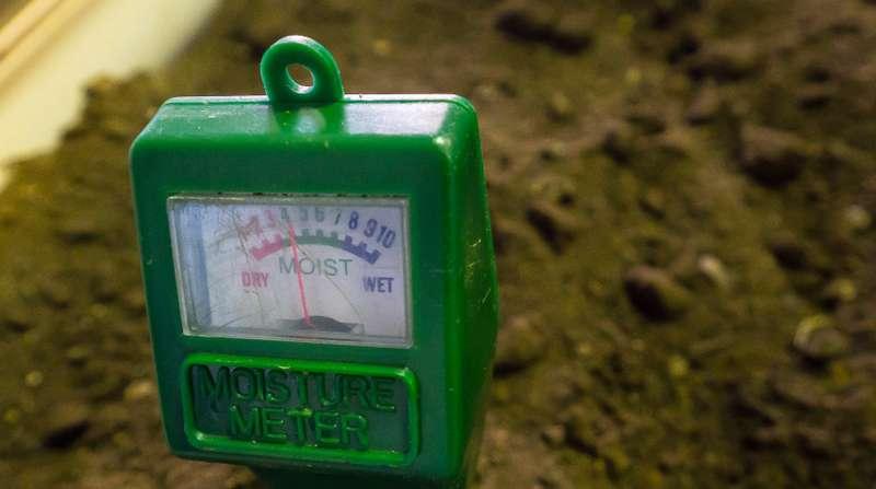 Feuchtigkeitsmessungen werden für die unterschiedlichsten Materialien notwendig. ( Foto: Shutterstock- ArliftAtoz2205)